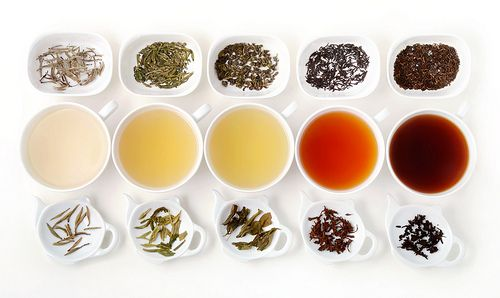 """It's Tea Time!"" or Basic Rules Of Brewing"