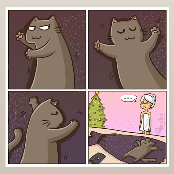10 Realistic Comics Which Every Cat Owner Will Understand