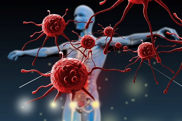 Immune System: How Does It Save Us? (VIDEO)