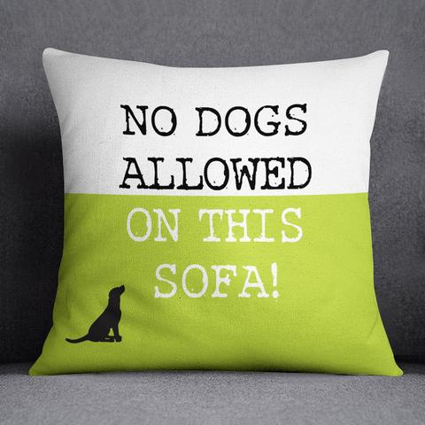 12 Tips How To Save Your Sofa From Furry Best Friends